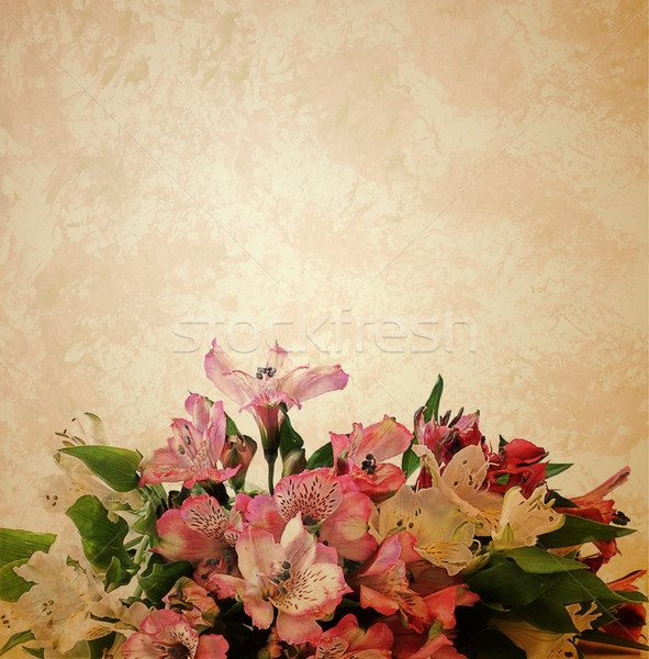 Papel viejo flores papel boda retro Foto stock © cherju