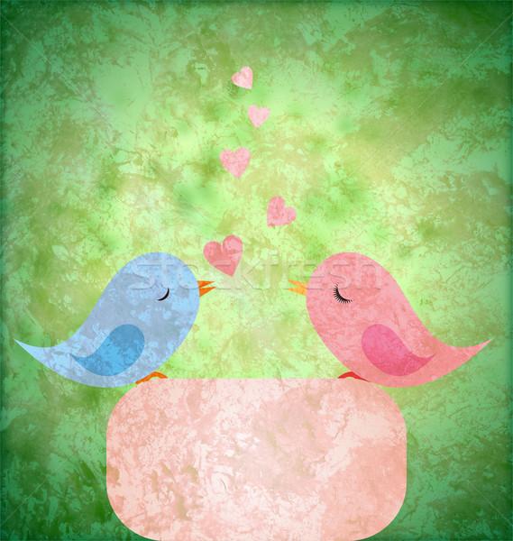 Blauw roze vogels liefde grunge retro Stockfoto © cherju