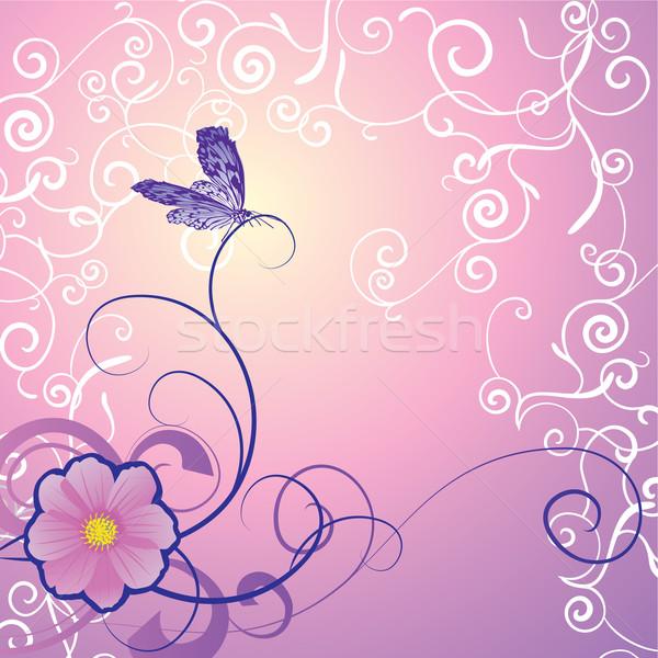 Détaillée papillon floral ornement magenta fond Photo stock © cherju