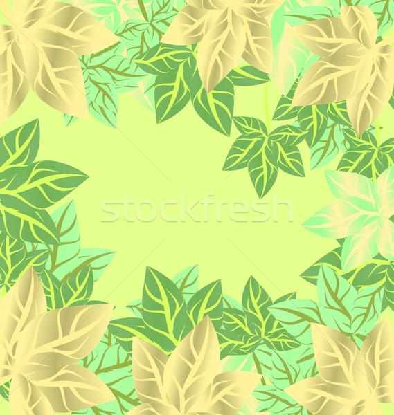 Zöld levelek vektor keret tavasz nyár évszak Stock fotó © cherju
