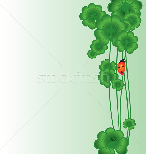 Clover vector border on white with ladybird for St. Patrick's da Stock photo © cherju