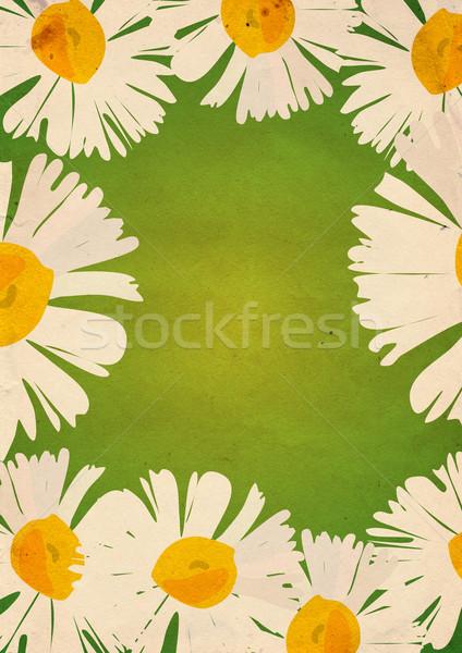 chamomiles frame with green background Stock photo © cherju