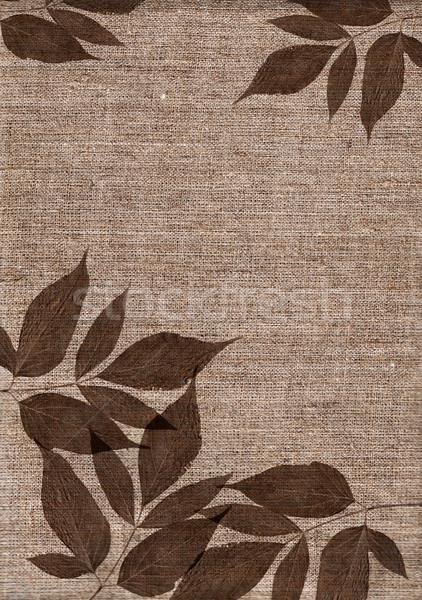textile texture leaves Stock photo © cherju