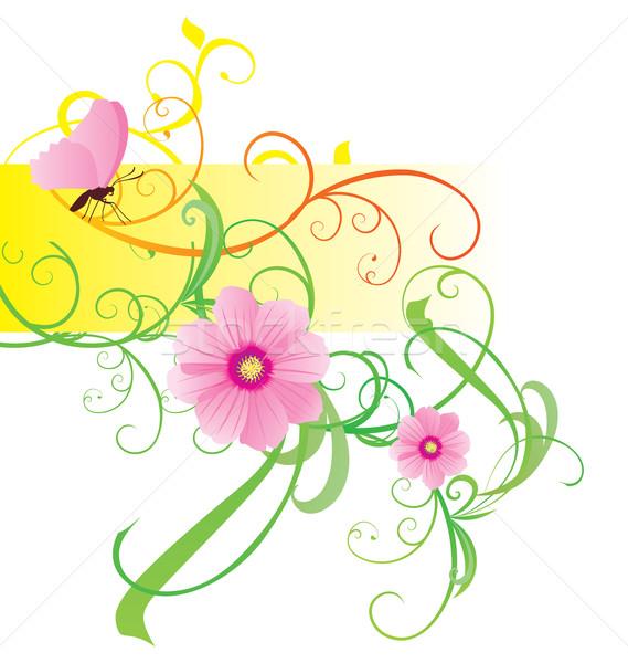 Voorjaar zomer vector bloem ontwerp frame Stockfoto © cherju