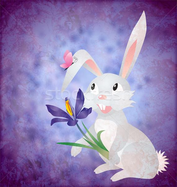 Húsvét nyúl kikerics virág grunge papír Stock fotó © cherju