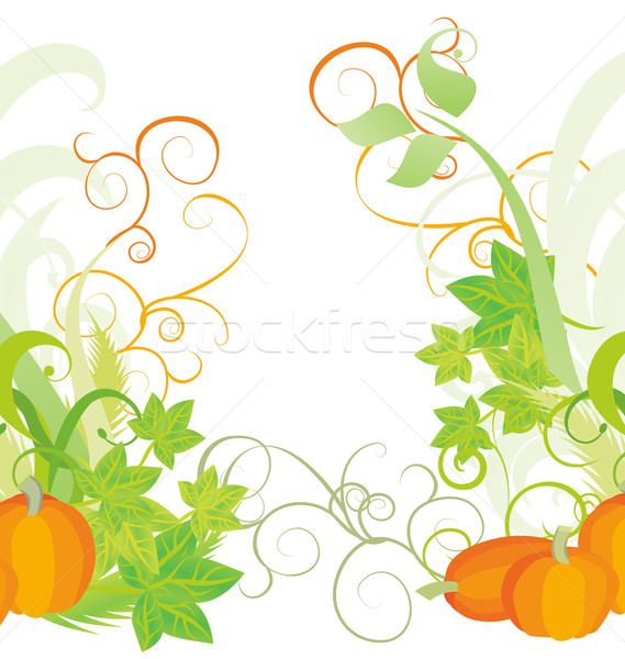 autumn textured orange pumpkin background Stock photo © cherju