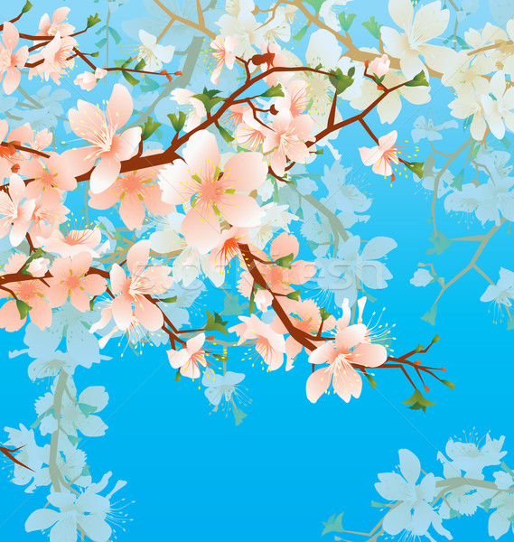 vector blossoming tree branch in the garden on the blue sky back Stock photo © cherju