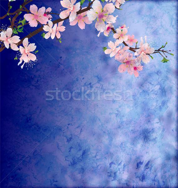 Rózsaszín cseresznyevirág ág sötét kék grunge Stock fotó © cherju