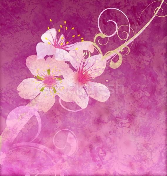 Roze bloemen donkere grunge illustratie papier Stockfoto © cherju