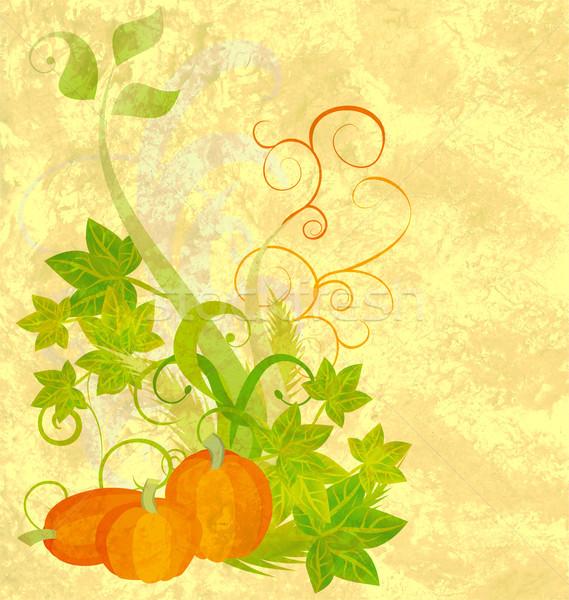 autumn textured orange pumpkin background Stock photo © cherju