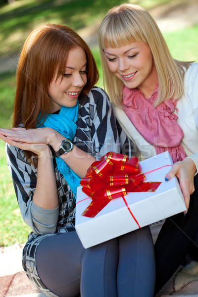 two sisters with gift in the park Stock photo © chesterf