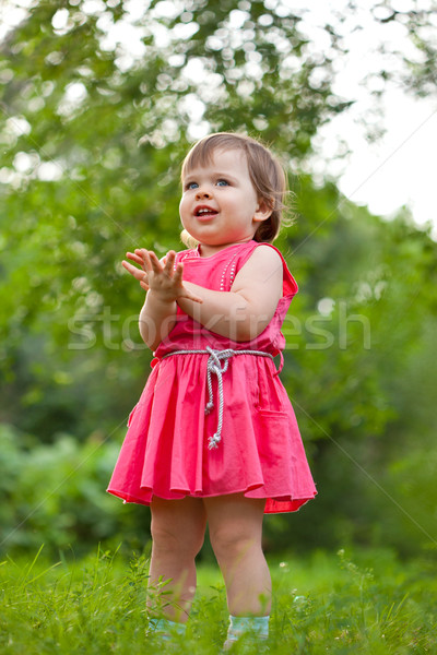 little girl stading on meadow Stock photo © chesterf