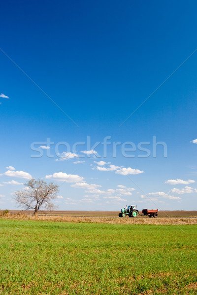 tractor working on fields Stock photo © chesterf