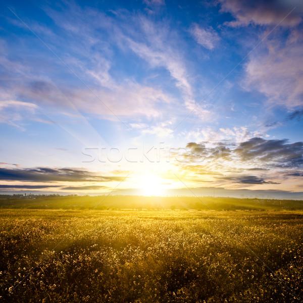 Mooie zonsondergang boven najaar veld hemel Stockfoto © chesterf
