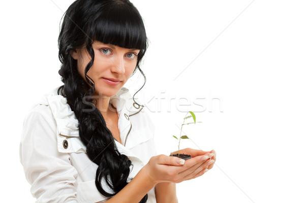 Nő tart zöld növény fehér fa Stock fotó © chesterf