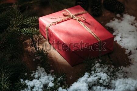 красный шкатулке мех дерево снега Сток-фото © chesterf