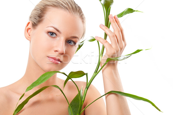 beautiful blond touches bamboo Stock photo © chesterf