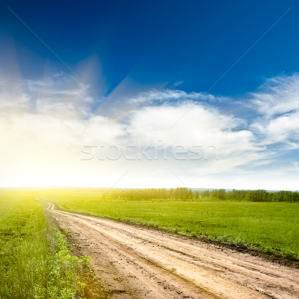 rural road to the sun Stock photo © chesterf