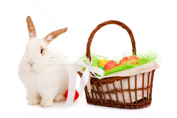 Stock photo: easter bunny and basket