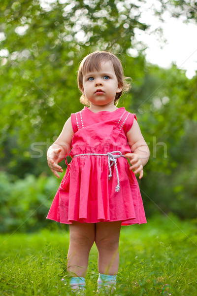 cute little girl stading on meadow Stock photo © chesterf