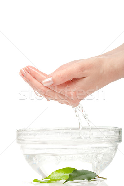 woman hands with bowl Stock photo © chesterf