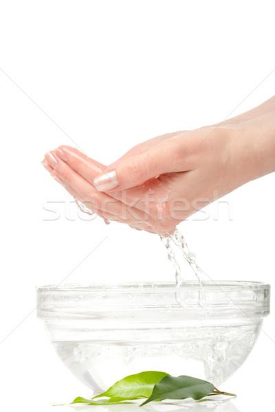 Nő kezek tál édesvíz egészség pálma Stock fotó © chesterf