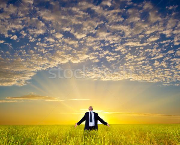 Stock fotó: üzletember · mező · boldog · megnyugtató · üzlet · égbolt