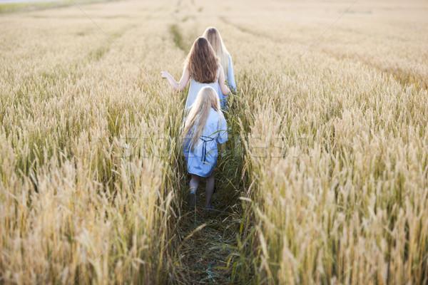 Gyönyörű fiatal anya búzamező fut messze Stock fotó © chesterf