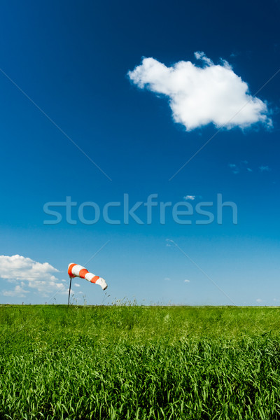windsock on green filed Stock photo © chesterf
