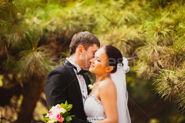 bride and groom outdoors portrait Stock photo © chesterf
