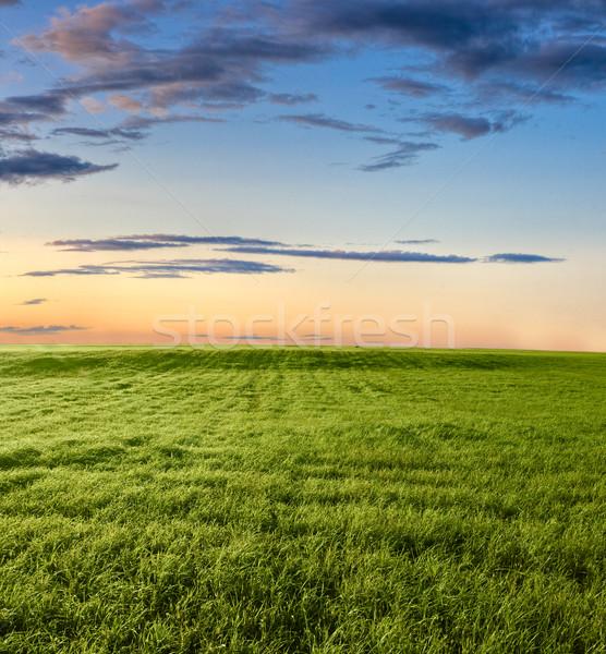 Zonsondergang boven groene hemel voorjaar Stockfoto © chesterf