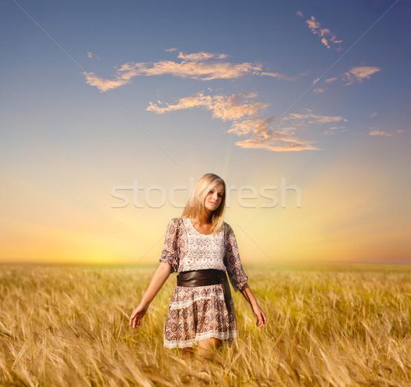 Nő sétál búzamező gyönyörű nő nők divat Stock fotó © chesterf
