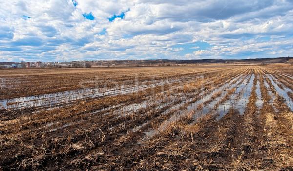 Tavasz mező tájkép széles égbolt víz Stock fotó © chesterf