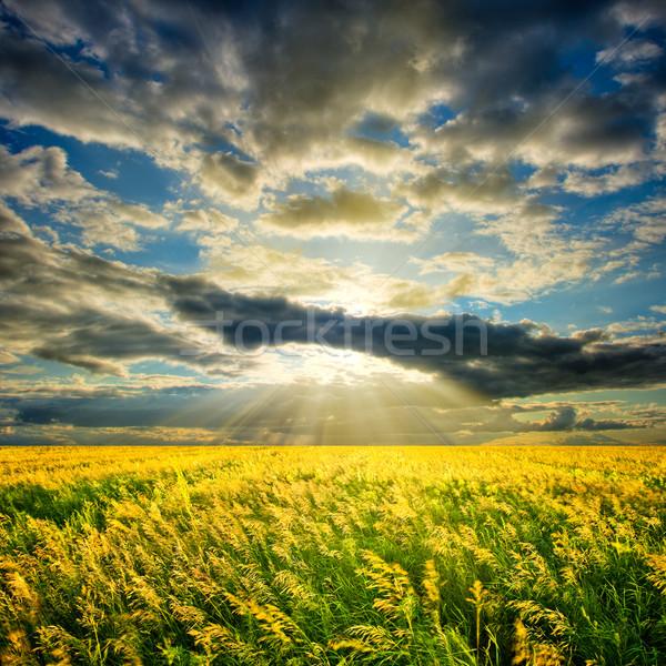 Stock fotó: Nap · mögött · felhők · fölött · mező · égbolt