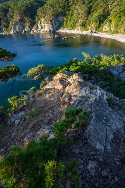 Skał morza rano świetle grób Zdjęcia stock © chesterf