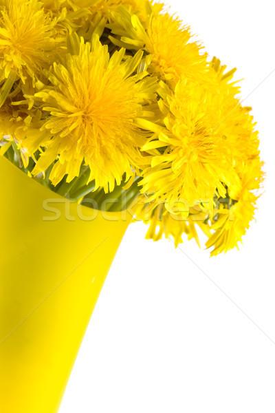Stock photo: closeup dandelions in the glass vase