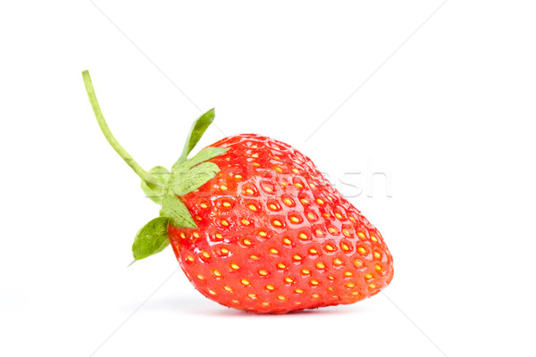 one isolated strawberry Stock photo © chesterf