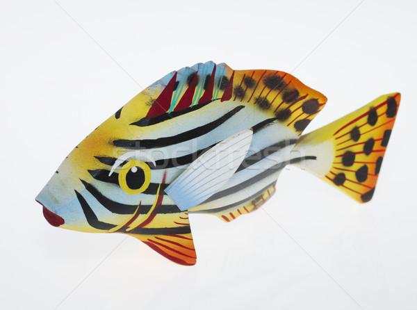 木製 魚 自然 夏 砂 生活 ストックフォト © cheyennezj