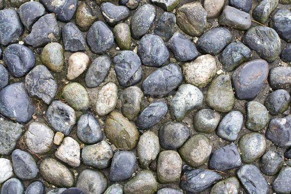 Kő textúra természet beton makró természetes Stock fotó © cheyennezj