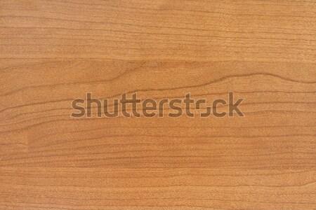 木の質感 ツリー 建物 木材 抽象的な 自然 ストックフォト © cheyennezj