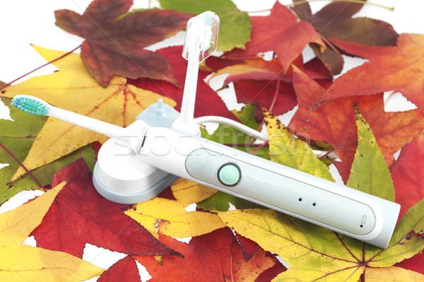 Elektromos fogkefe zöld száj ősz fogorvos Stock fotó © cheyennezj
