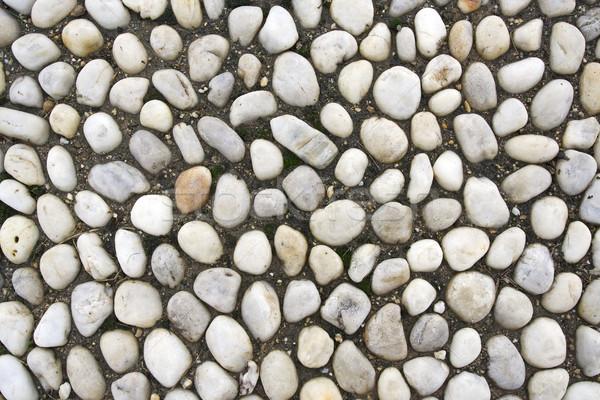 岩 テクスチャ 自然 具体的な マクロ 自然 ストックフォト © cheyennezj