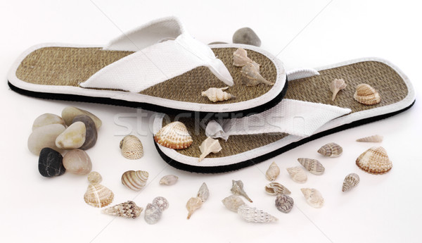 Flip Flop  Stock photo © cheyennezj