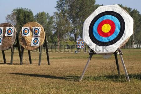 Okçuluk spor alan grup halka oynamak Stok fotoğraf © cheyennezj