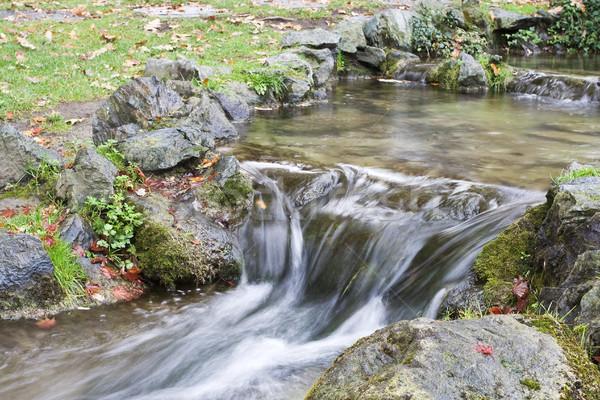 Kicsi vízesés víz tájkép kert szépség Stock fotó © cheyennezj