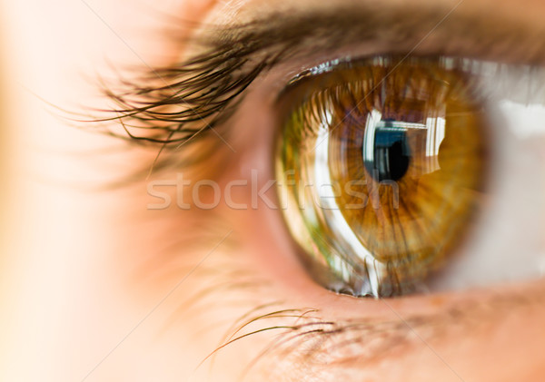ブラウン 眼 マクロ 画像 抽象的な 光 ストックフォト © choreograph