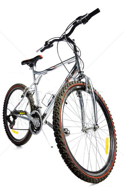 wonderful bicycle Stock photo © choreograph