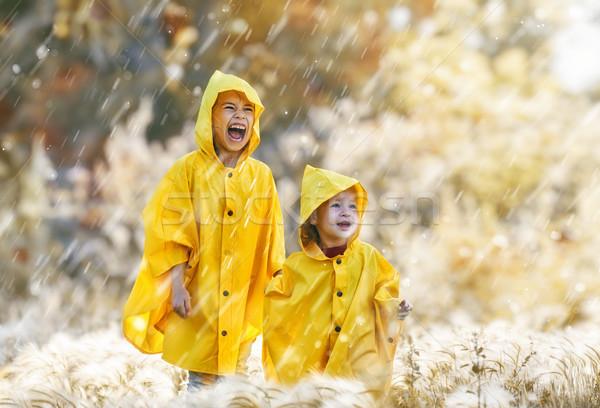 çocuklar sonbahar yağmur iki mutlu komik Stok fotoğraf © choreograph