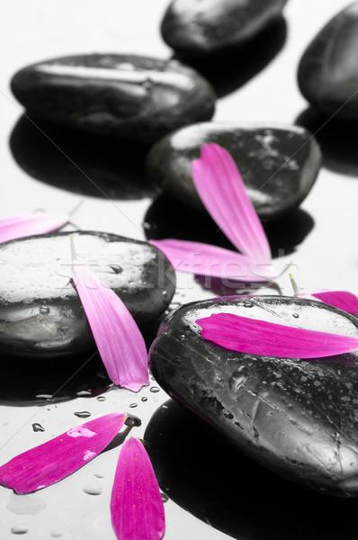 Spa stenen bloemblaadjes achtergrond zwarte druppels Stockfoto © choreograph