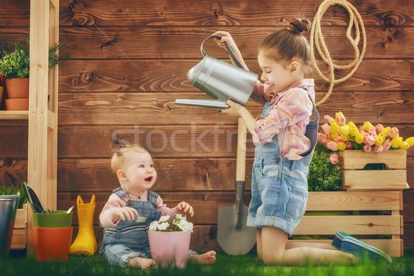 girls gardening in the backyard Stock photo © choreograph